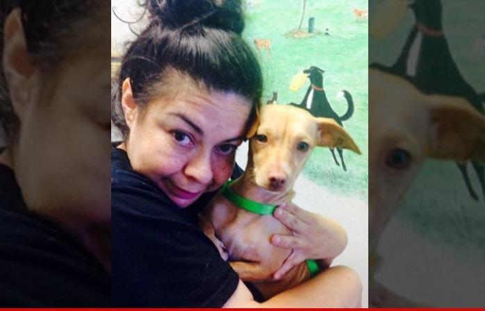 Katie Holmes The Girl Next Door Suri Cruise Lost Dog Found
